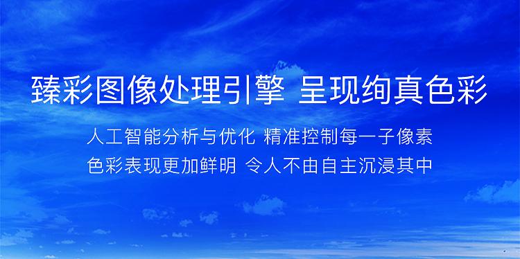 【苏宁专供】LG电视55LG75CMECB